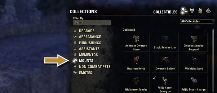 Mounts Collected In Eso Interface