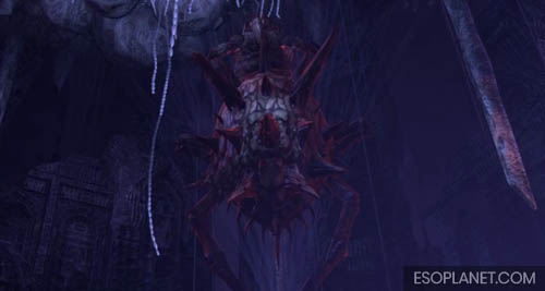 Cradle of Shadows Dungeon Guide Final Boss wait for her to drop down