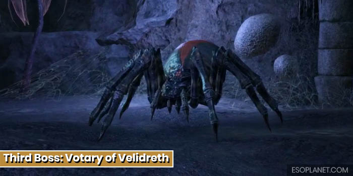 Cradle of Shadows Dungeon Guide Third Boss Votary of Velidreth