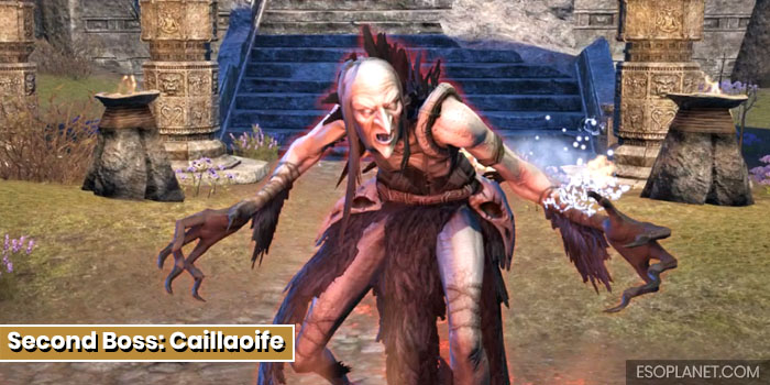 ESO Bloodroot Forge Guide Second Boss Caillaoife