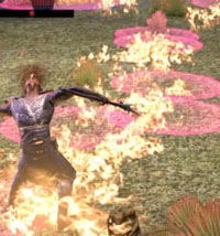 ESO Bloodroot Forge Guide Third Boss Fire Shooters