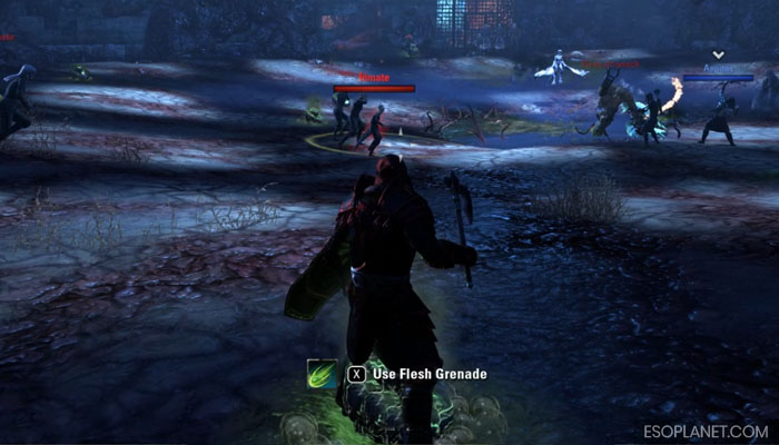 ESO Imperial City Prison Dungeon Guide Second Boss Using Flesh Grenade