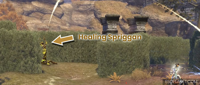 ESO Moon Hunter Keep Healing Spriggan