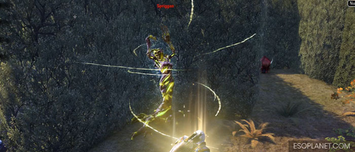 ESO Moon Hunter Keep Second Boss Healing Spriggan